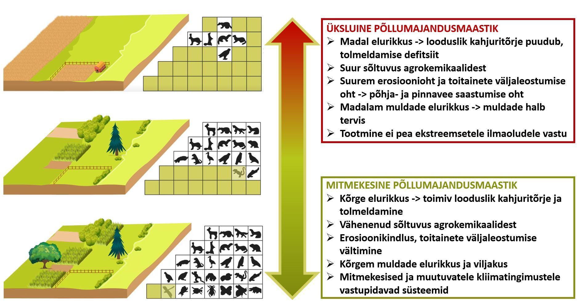 Loodushoidlik põllumajandus